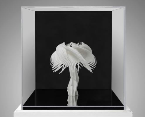title: Silene Luminaris sive Muflier de Borges, 2014medium:  Sculpture, 3D printer (resin) with box in acrylic glass and mirrorseries:  Fractal Flowerssize: 45 x 45 x 45 cmprice: Enquire